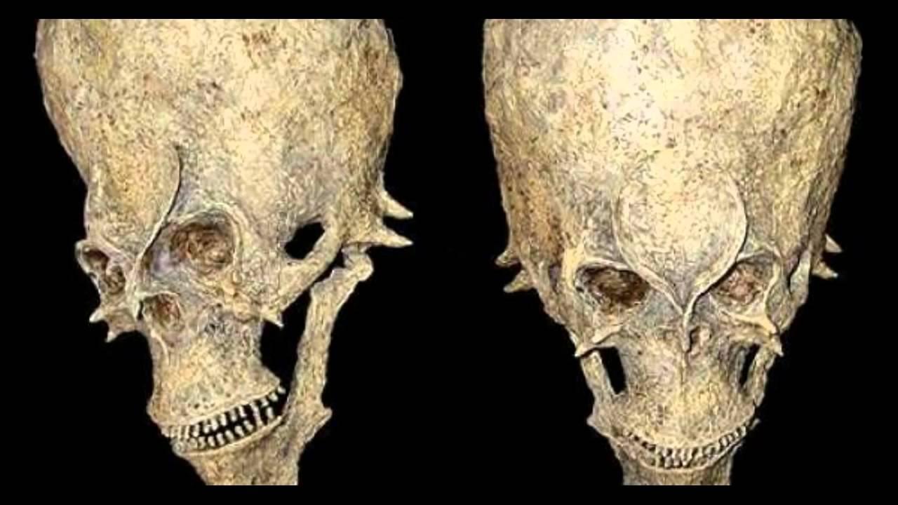 Strange Alien Skull Discovered In Africa – Real or Hoax