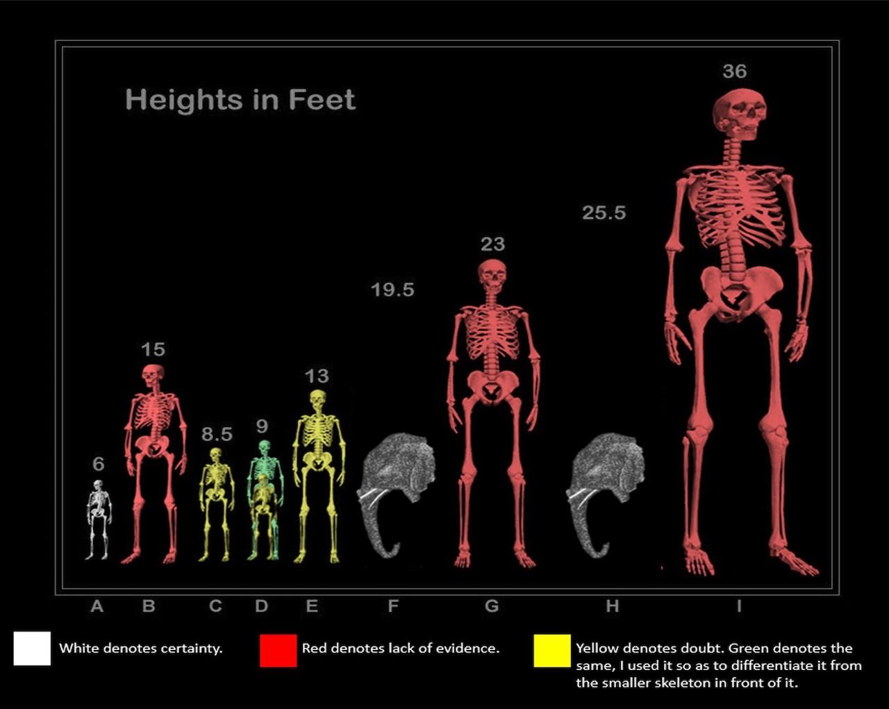 Skeleton Of 25 Foot Giant Human Found In Ecuador