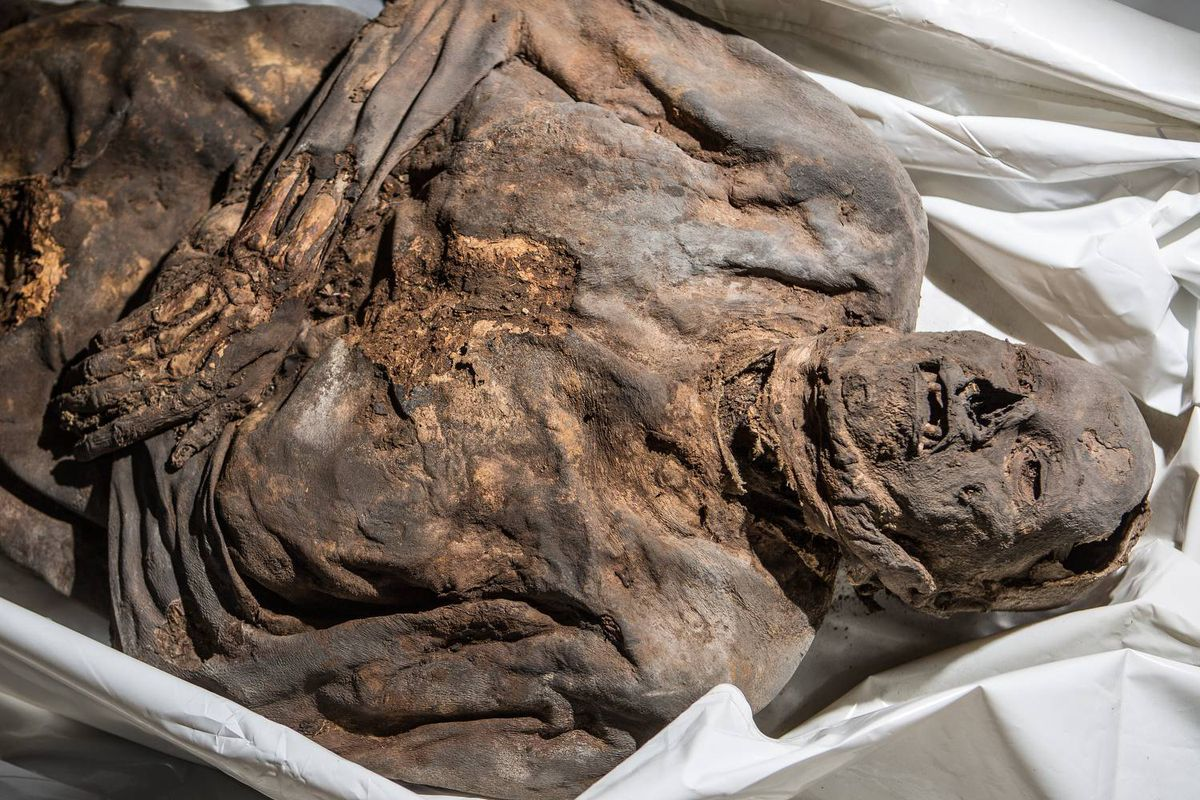 mummified remains