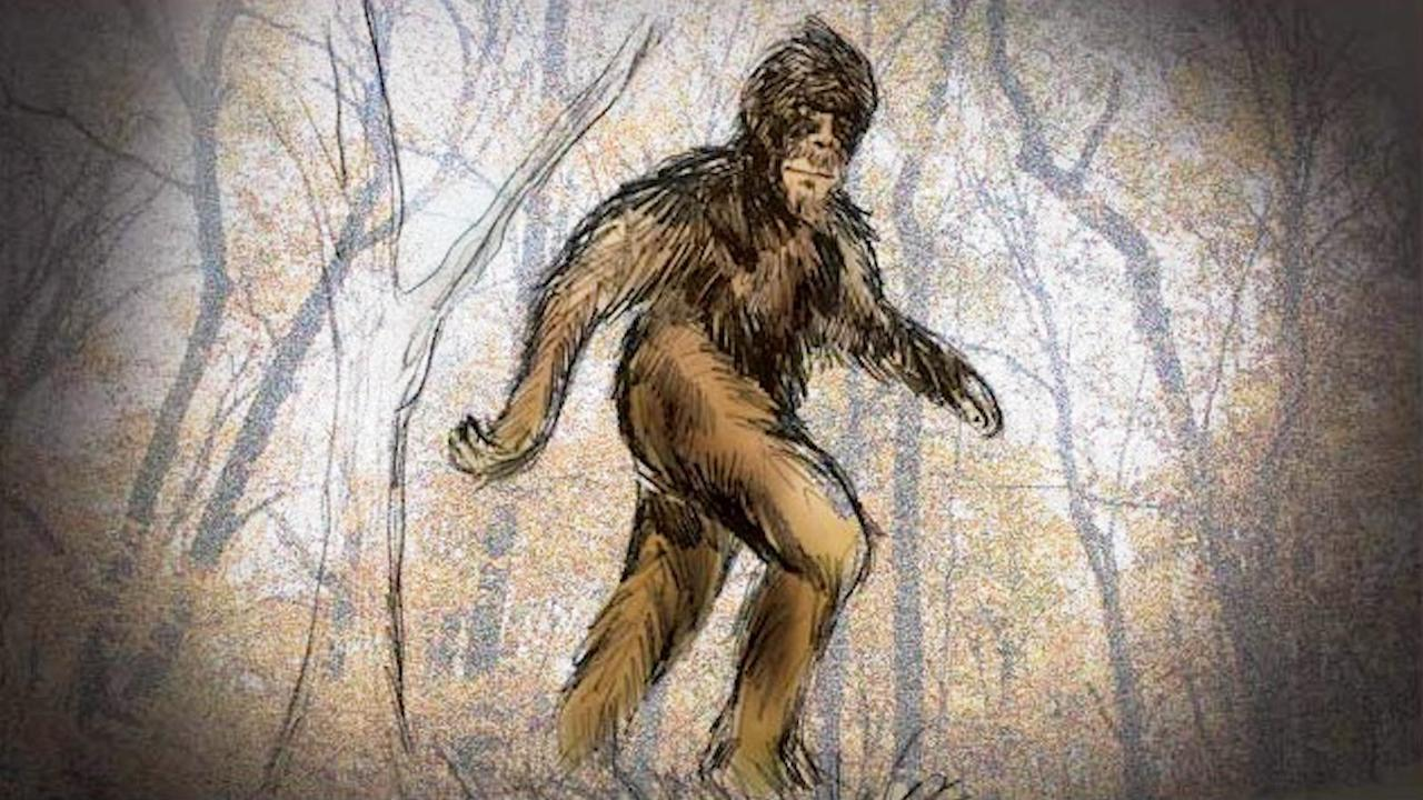 kidnapped by bigfoot