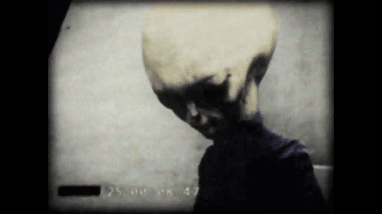 Is This A Real Grey Alien?