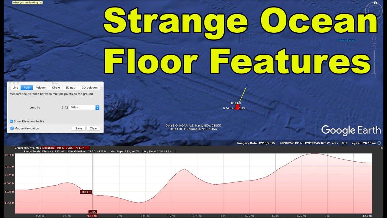 strange ocean floor